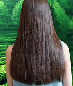 Làm sao để mọc tóc nhanh