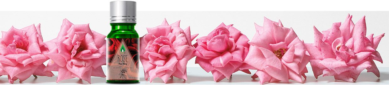 Tinh Dầu Hoa Hồng Rose
