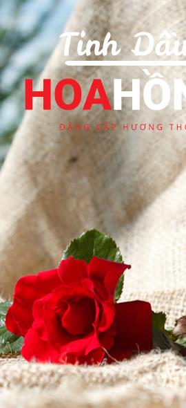 Tinh Dầu Hoa Hồng Rose - 30ml